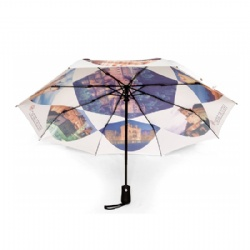 fashionable market folding umbrella